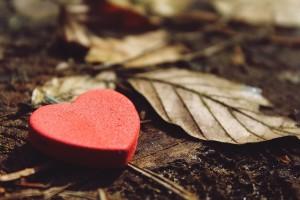 heart-1318850_640